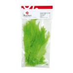 Plumes - Vert clair - 10-15 cm - 2 g