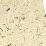 Papier Thaï 48 x 67 cm Fibres de mûrier Kozo & Coco