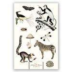 Carnet Artbook A4 21 x 29 cm 100 g/m² 128p Noir et blanc